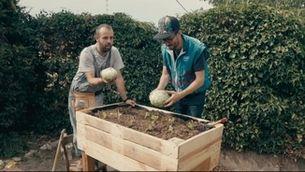 Bricoheroes - Com fer un hort urbà
