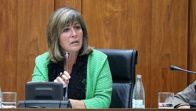 Els vots del PSC tomben a l'Hospitalet una moció de suport als docents d'El Palau