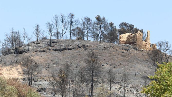 El paisatge arrasat pel foc de la Ribera d'Ebre (ACN)