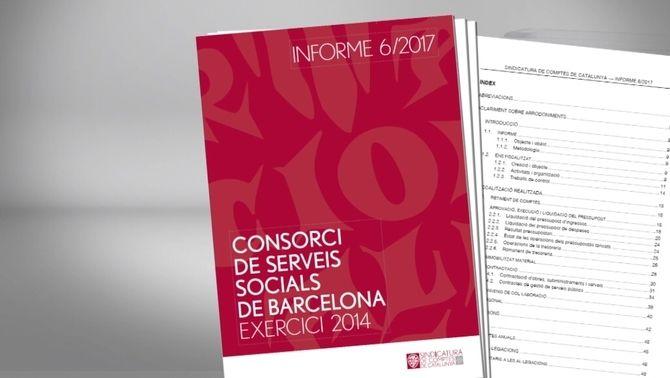 Un informe de la Sindicatura de Comptes va detectar irregularitats en l'exercici del 2014