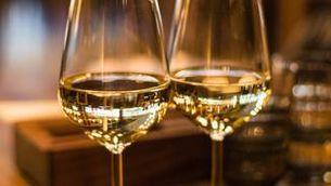 La vida a la vinya continua