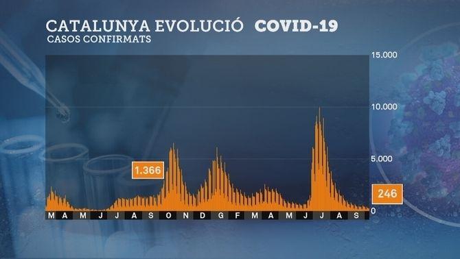 Gràfica amb l'evolució dels casos de Covid a Catalunya