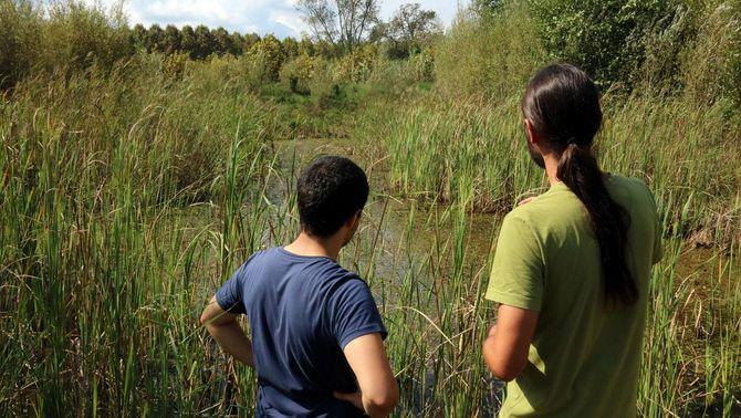 Dos tècnics de la fundació contemplen una de les basses naturals creades per la subsistència de la tortuga aquest diumenge 16 de setembre de 2018. (…