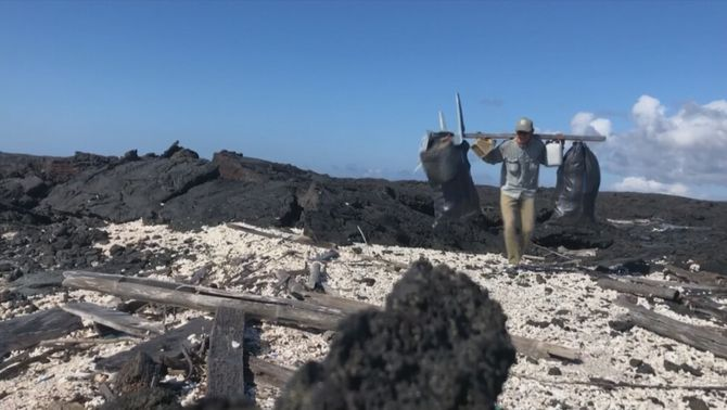 Retiren 2 tones de brossa de la costa de les illes Galápagos