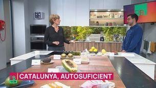 Podem substituir alvocats o quinoa amb aliments produïts a Catalunya?