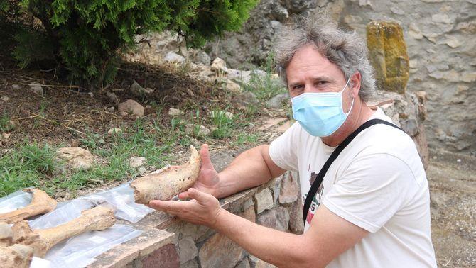 Jordi Rosell, investigador de l'Institut Català de Paleoecologia Humana, mostra una mandíbula d'ós trobada a la cova del Toll de Moià (ACN…
