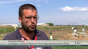 Projecte internacional al Pla d'Urgell per optimitzar l'aigua de cara al futur