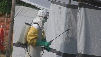 l'ebola-un-possible-aliat-contra-els-tumors-cerebrals