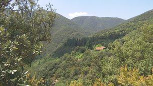 La contaminació del trànsit de l'àrea metropolitana arriba fins al parc del Montseny