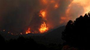 El foc ha començat en uns camps a tocar de la carretera i s'ha estès ràpidament