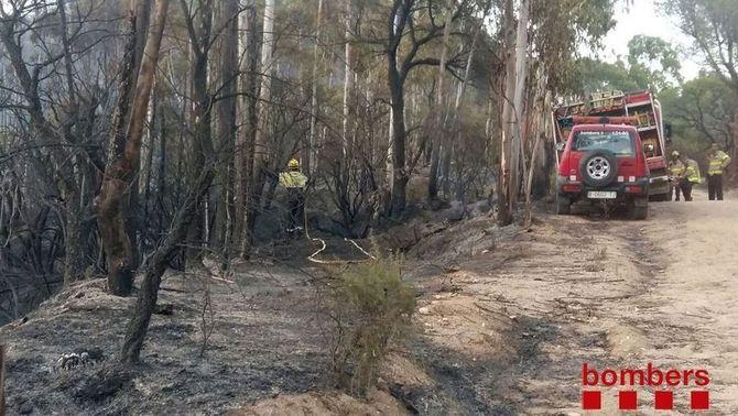 Controlat l'incendi forestal que ha cremat unes 27 hectàrees entre Blanes i Tordera