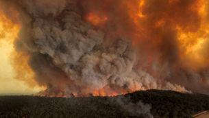 Un estudi va alertar fa 12 anys el govern australià d'incendis intensos i prolongats