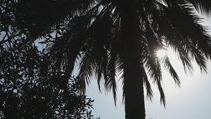 Xile, amb calor a ple hivern i sota una severa sequera