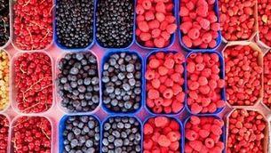 Fruits vermells