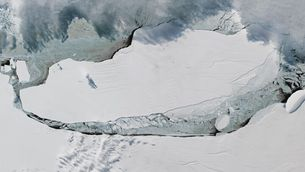 L'iceberg més gran del planeta es fon quatre anys després