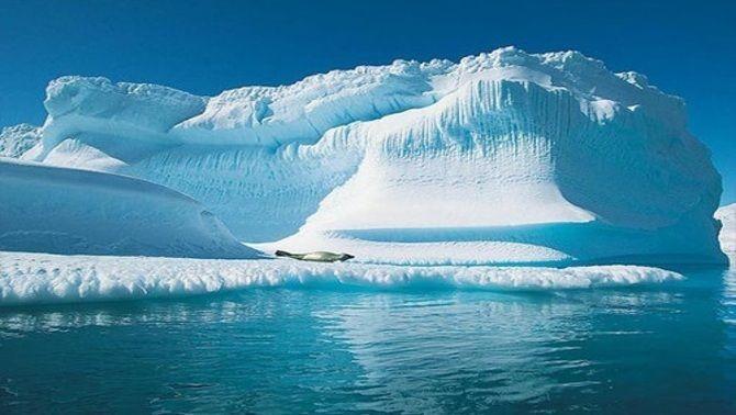 """""""La batalla pel Pol Nord"""""""