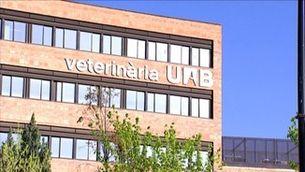 Exàmens virtuals a la universitat durant el confinament