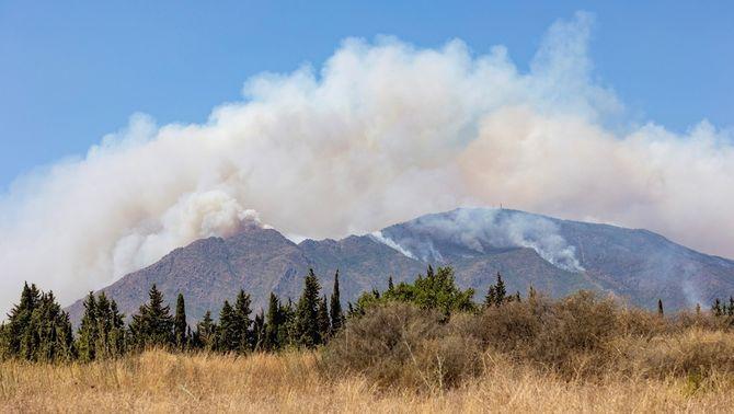 El foc de Sierra Bermeja continua descontrolat, hi ha diverses columnes de foc ben visibles i s'han desallotjat sis localitats malaguenyes (EFE…