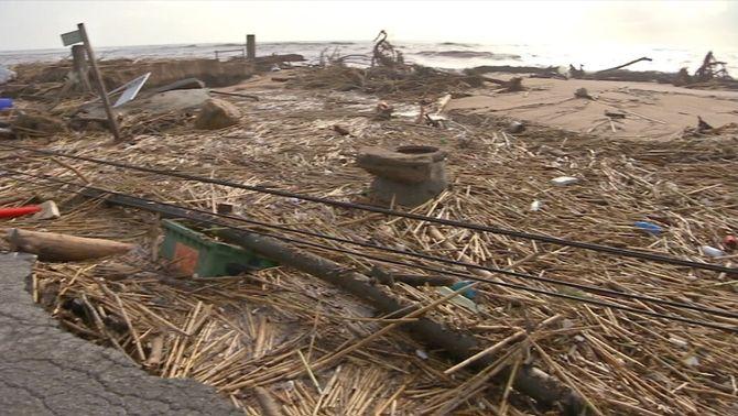 Clam per una gestió natural del litoral per evitar els efectes de temporals com el Gloria