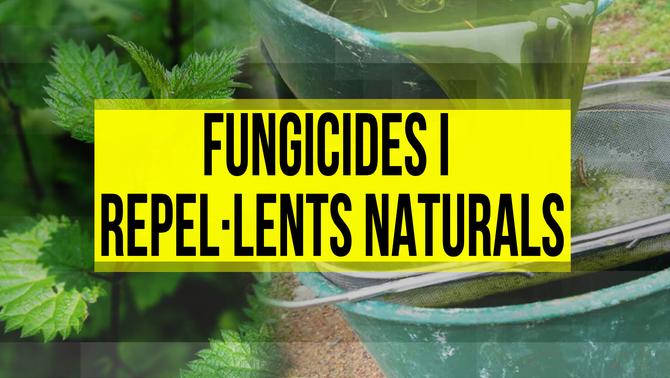 Fungicides i repel·lents naturals